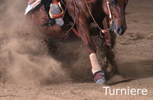 Reinhard Hochreiter stellt Reining-Pferde auf Turnieren vor. Reinhard Hochreiter coacht Reiter auf Turnieren.