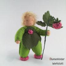 Blumenkinderwerkstatt Himbeerjunge