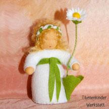 Blumenkinderwerkstatt Bellis Gänseblümchen