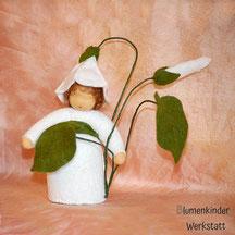 Blumenkinderwerkstatt Ackerwinde