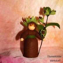 Blumenkinderwerkstatt Haselnuss
