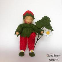 Blumenkinderwerkstatt Erdbeerjunge gross