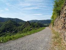 Bei Altenahr beginnt der Rotweinwanderweg und dort fängt auch gleichzeitig die landschaftlich schönste Strecke des Rotweinwanderweg an.