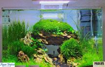 Aqua-Tropica Nano-Aquarien