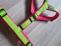 Y-Geschirr hellgrün pink verstellbar Brustlänge Kundenwunsch