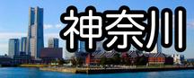 合同説明会・進学相談会 神奈川県の開催日程
