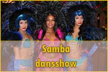 samba danseressen, brazilliaanse danseressen