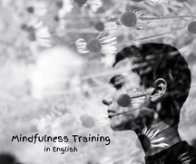 English Mindfulness Training in Haarlem