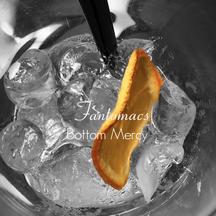 Coverfoto for album 'Bottom Mercy'
