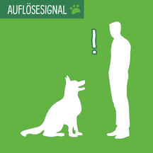 Grafik mit Hund, der vor einem Menschen sitzt und ihn aufmerksam anschaut