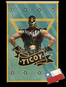 Logo Ticoy director
