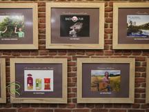 Bilderrahmen für Ladenbau, Bilderrahmen für Ladeneinrichtung, Regionale Lieferranten präsentiert