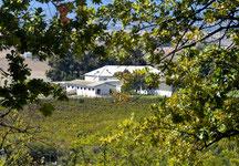 "Weingut ""Allesverloren"", Südafrika"