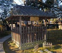 弁円の回心を慶び笠間時朝が寄進したと伝わる桜の遺木(西念寺境内)