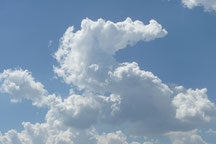 Sogar die Wolken wurden zu Drachen