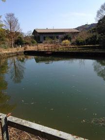 山県用水水源池