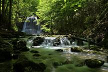 Der Wasserfall im St. Josefsthal