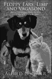 Cover der englisch sprachigen Ausgabe