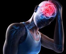 мозг, сотрясение, гипофиз, гормон, каспаза