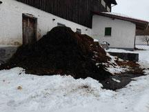 Gülle Biogas Voll Automatische Gülle Biogas mit modularer Leistung ab 100 GVE Viehbetriebe entweder Milchvieh kostellos günstig Angebot Rinderzucht oder Schweine
