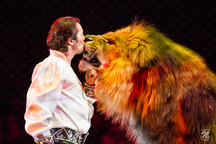 Fotograf aus Rosenheim, Kevin Niedereder, Circus Krone