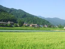 農林事業1