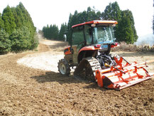 荒廃農地の整備