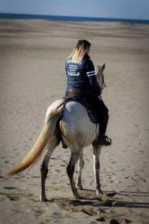 AbrivadoRanch: Trois  heures de randonnée à cheval en petit groupe organisée par Abrivado Ranch en Camargue,