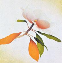 Magnolia-4  35x35cm