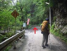 登山口に向かう林道①
