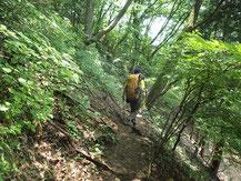 吊り尾根のトラバース状の登山道