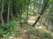 吊り尾根の林道と平行する登山道