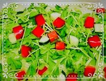 キャベツと豆苗とパプリカのサラダ