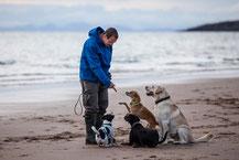 Jörg auf einer unserer Womotouren in Schottland