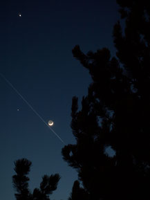 Venus (oben), Jupiter und Mond mit Flugzeug-Kondensstreifen