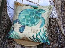Schildkröte aquamarien