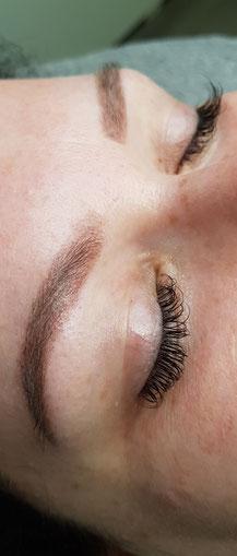 Powderbrows/Softbrows