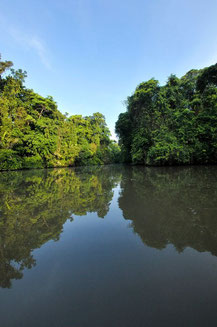 Combination Tortuguero and Arenal