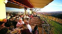 Genießen Sie unsere Qualitätsweine inmitten einer Landschaft in malerischen Farben: grüne Weingärten, umgeben von blauem Himmel und der strahlenden Sonne ...