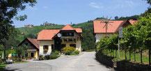 Der Jungwinzer Michi Pronegg hat seinen Betrieb in die drei Bereiche: Weingut, Schlafgut und Genussgut eingeteilt.