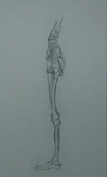 鉛筆による模写 小熊麻紗子筆
