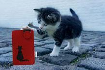 Handyhülle aus Filz, Motiv Katze