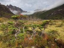 Sierra Valdivieso trek, Fuegian Andes