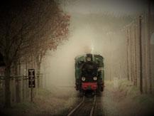 """Der """"Rasende Roland"""" bei Putbus"""