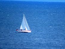 Segeln auf dem Strelasund