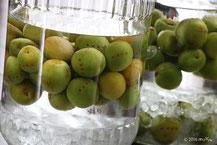 別ページ:梅酒の作り方