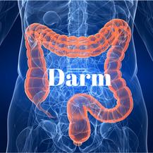 Buikpijn klachten (IBS)