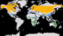 Karte zur Verbreitung der Kraniche
