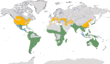 Verbreitung der Gattung Nycticorax