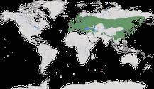 Verbreitung der Gattung Aegithalos